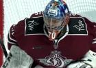 Video: KHL atvairījumu topā arī Gudļevskis