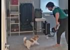 """Video: Panarins un """"Rižijs"""" gatavojas cīņai pret vareno """"Lightning"""""""