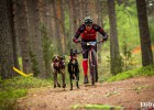 Latvijai četras uzvaras Pasaules kausa posmā kamanu suņu sportā Ādažu novadā