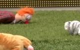 Video: Futbola mačā bērni piedzīvo rotaļlietu lietu