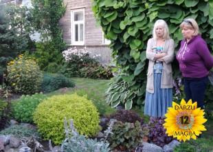 Video: Uz ekrāniem jaunums- 12 DĀRZU MAĢIJA. 1.sērija- Auna dārzs.