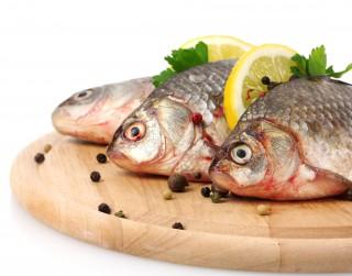 Zivis, to vērtīgās īpašības un pagatavošana
