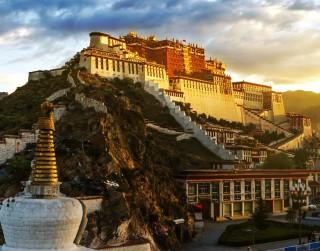 Tibetas gudro padomi