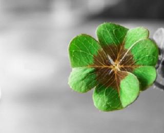 Četri veidi kā piesaistīt veiksmi. Psihologu ieteikumi