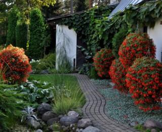 """Video: #7 """"12 dārzu maģija"""" – Kas īpašs Svaru dārzā?"""