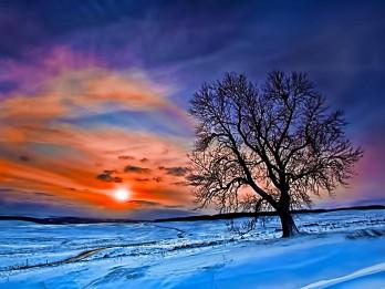 Foto: Fantastiskie ziemas saulrieti 15 fotogrāfijās