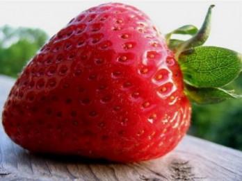 Zemeņu laiks. 7 iemesli, kāpēc ēst zemenes