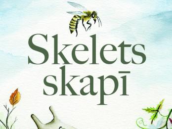 """Izdevniecībā """"Dienas Grāmata"""" izdots Lilijas Berzinskas """"Skelets skapī"""""""