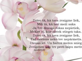 Tava vārda skaidrojums (nozīme) un ietekme uz tavu likteni. 24.maijs- Ilvija, Marlēna, Ziedone