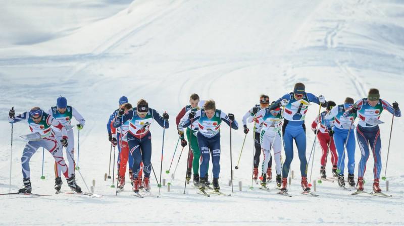 Ziemas orientēšanās pasaules čempionāta stafetes sacensību starts. Foto: Latvijas Orientēšanās federācija