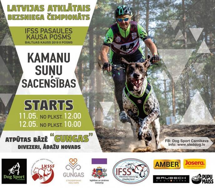 Nedēļas nogalē Pasaules kausa posms un Latvijas čempionāts kamanu suņu sportā