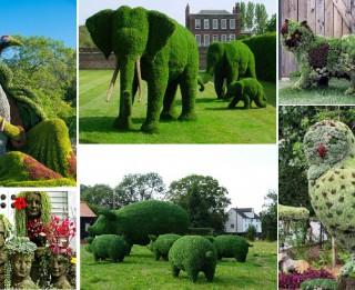 Foto: Dārzs kā māksla 30 brīnišķīgās fotogrāfijās