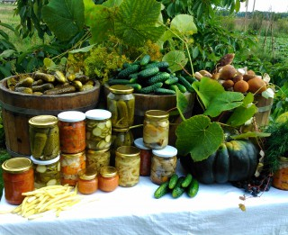 """Paaudžu paaudzēs gardi zaļumi un dārzeņi. Elejas pagasta """"Vārpās"""" mājražošana rit pilnā sparā"""