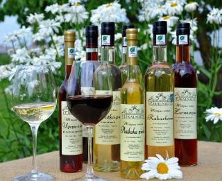 Mājas vīnu darītava VĒJKALNIETIS