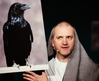 """Izrāde-lekcija """"PUTNI"""" iepazīstinās bērnus ar putnu pasauli"""
