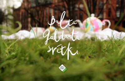 4. maijā notiks pirmais Baltā galdauta svētku pikniks